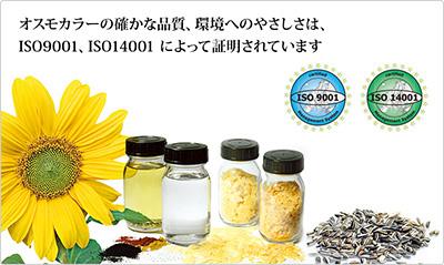 osumo-main8